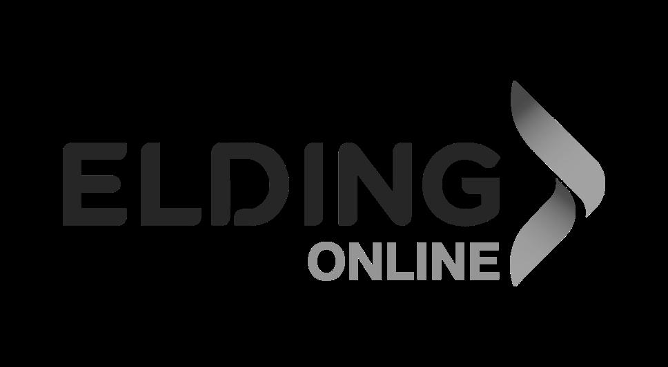 HH Simonsen Repair Shampoo 250